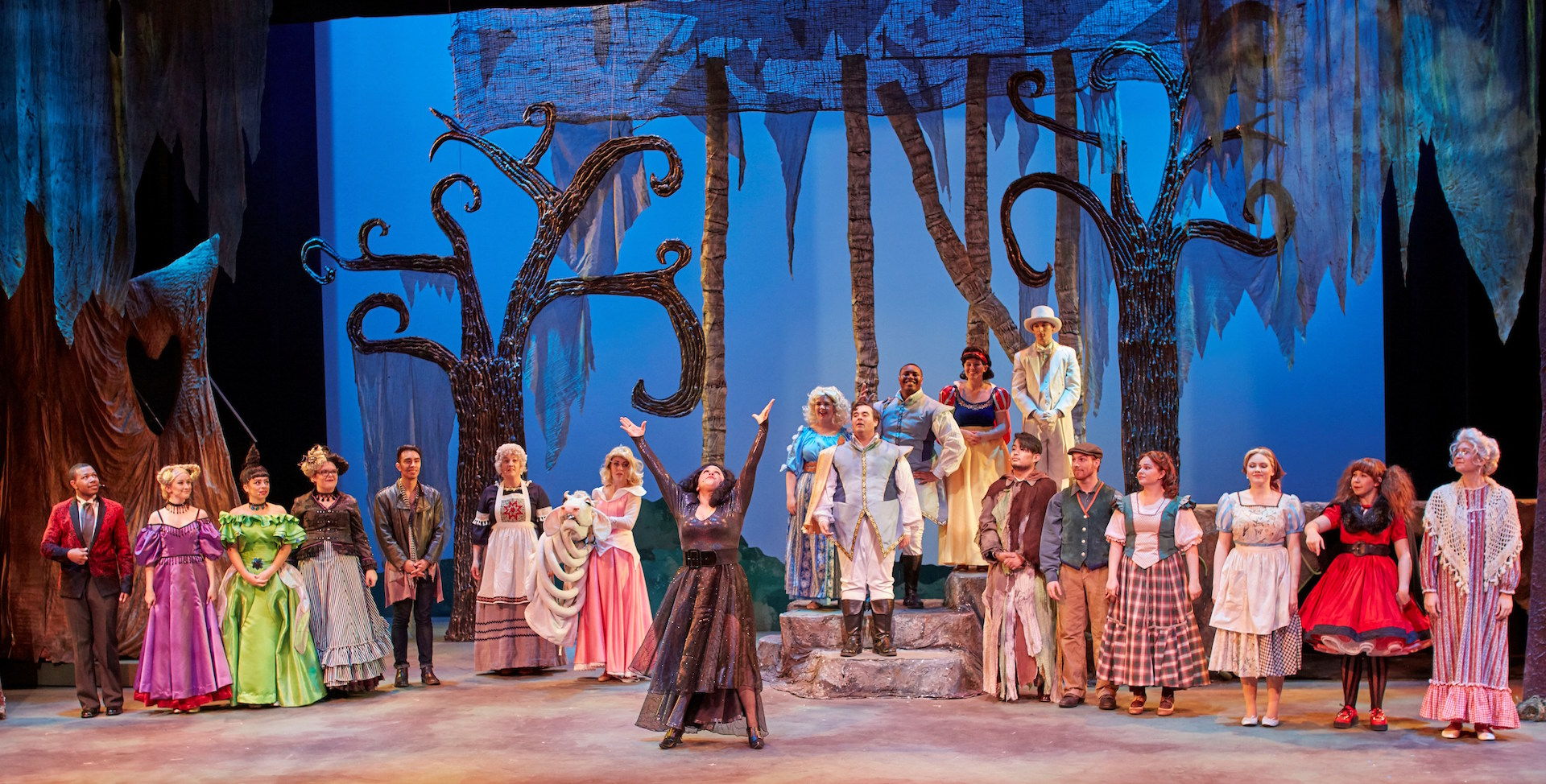 Cast of Into the Woods on stage